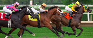 Racing Thoroughbreds at Arlington Park