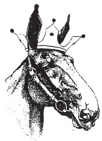 mule wearing a crown