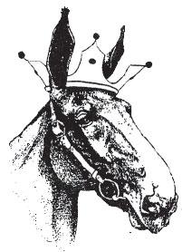 mule wearing a crown
