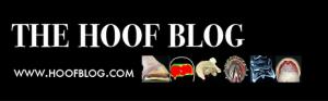 Header from Fran Jurga's Hoof Blog